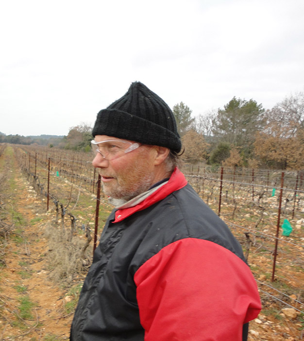 Michel pruning